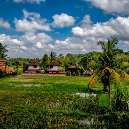 travel tips for bali